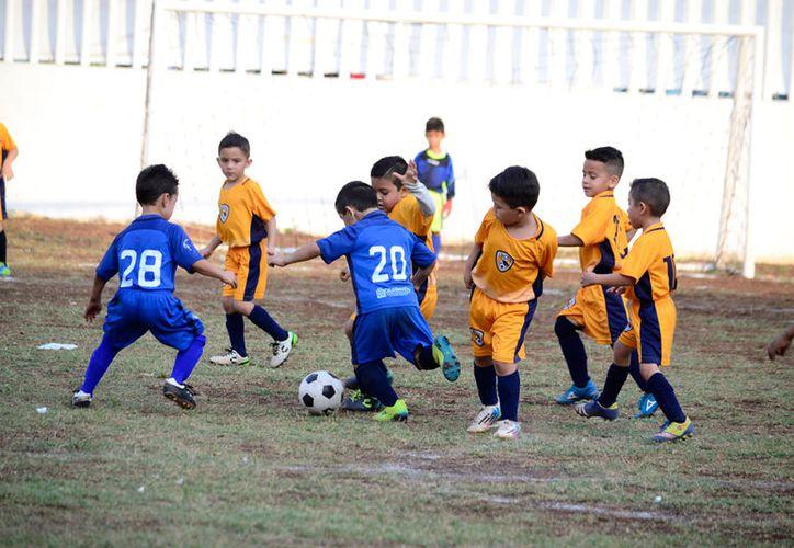 Este domingo 2 de abril se juegan las finales de la Copa Champions Interligas, en Mérida. (Archivo/SIPSE. Daniel Sandoval)