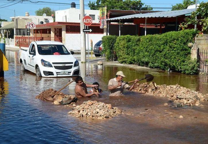 Las empresas constructoras no tenían estipulado al repavimentar restablecer las tomas de agua potable, y cuando las rompían nosotros teníamos que ir a reparar el daño:  Japay (SIPSE)