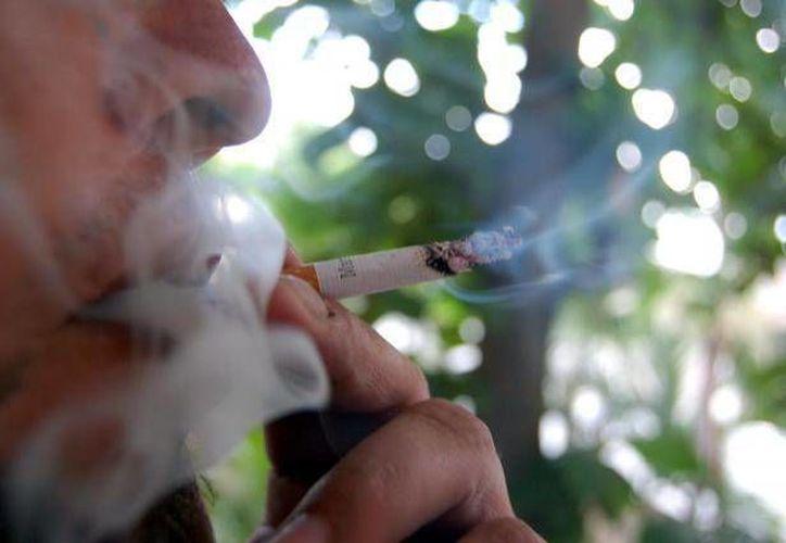 La OMS recomienda evitar cualquier clase de tabaco para reducir el riesgo de contraer cáncer. (Archivo/SIPSE)