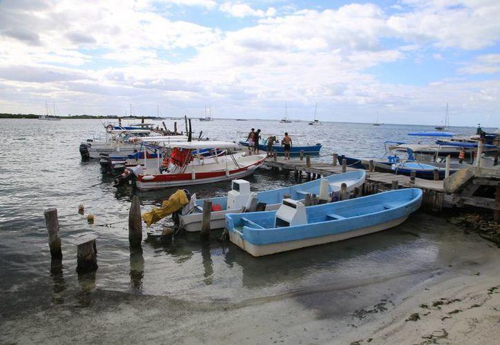Piden cambiar las leyes para evitar la pesca de tiburones en Isla Mujeres. (Luis Soto/SIPSE)