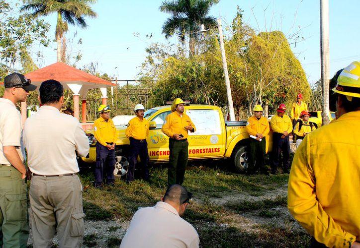 Se planteó un plan de trabajo que ha permitido detectar y atender oportunamente cada reporte de incendio. (Foto: Juan Rodríguez / SIPSE)