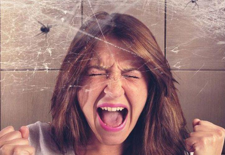 El tratamiento para una fobia es la terapia de exposición y la psicoterapia específica.  (Internet)