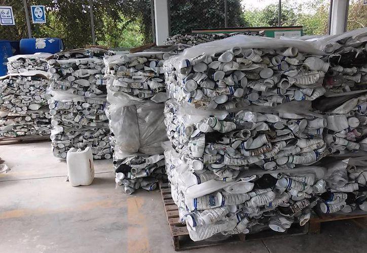 Más de 60 toneladas de envases de agroquímicos usados en Q. Roo no son recuperados. (Javier Ortiz/SIPSE)