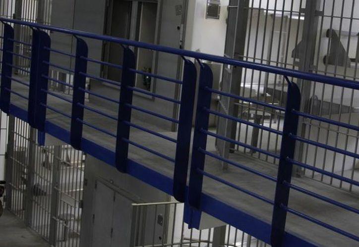 Las personas que se quejaron están presas en las cárceles federales. (animalpolitico.com)