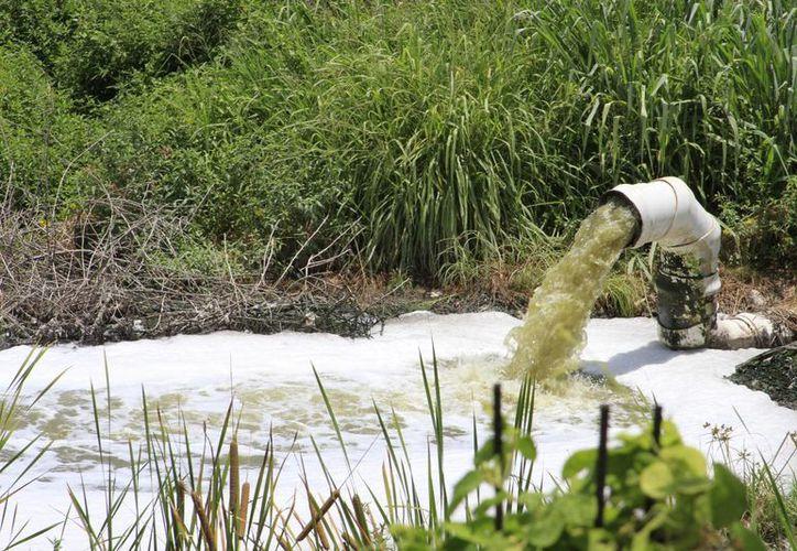 La CAPA remite informes a la Conagua sobre la situación y proceso del agua tratada en la Sabana. (Ángel Castilla/SIPSE)