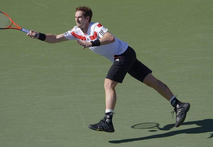 Por una lesión Murray no podría tener acceso a su sexta Final ATP. (EFE)