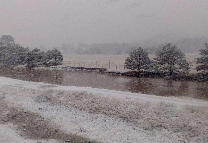 Varias comunidades del sur de Nuevo León se encuentran incomunicadas por las intensas nevadas que se registran en esa zona. (Notimex)