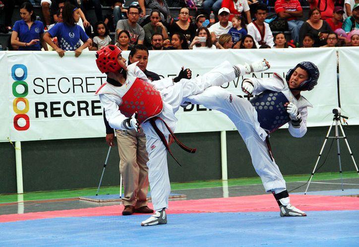 Yucatán tuvo destacada actuación en el TKD regional. (Milenio Novedades)