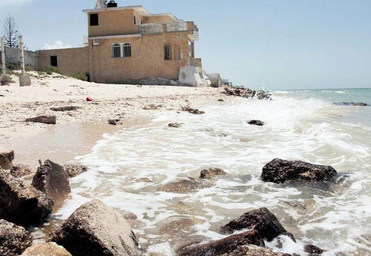 Residentes de Uaymitún a Telchac Puerto proponen plan para que la erosión no cause más daño en las playas de la zona. (Milenio Novedades)