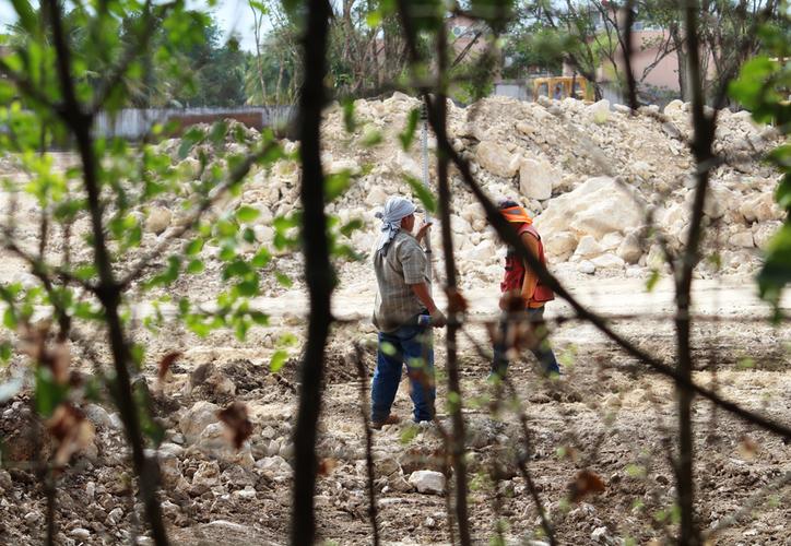 El ayuntamiento de Solidaridad busca la construcción de un parque y un colegio privado en el interior de Ciudad Mayakoba. (Octavio Martínez/SIPSE)