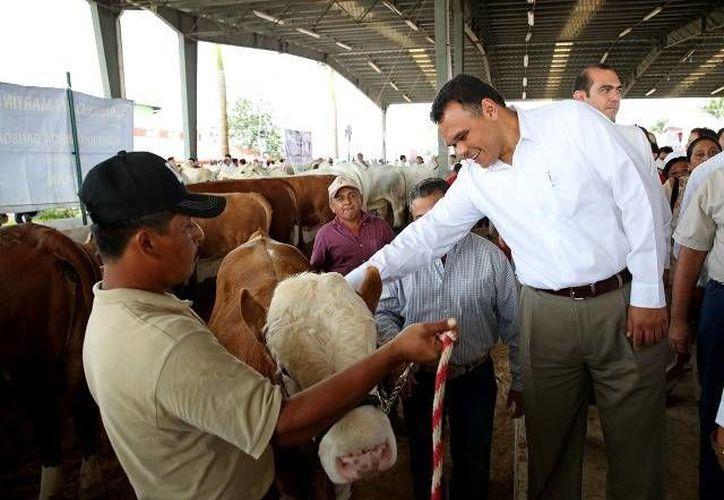 De gira por el oriente del estado, el Gobernador entrega y supervisa obras de infraestructura, en las que se invierte más de 21 mdp, e inaugura la Expo Feria Tizimín 2014. (Cortesía)