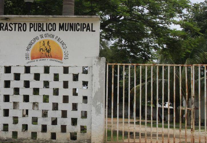 La Contraloría Municipal detectó un desvío por más de un millón de pesos en el Rastro de Othón P. Blanco. (Harold Alcocer/SIPSE)