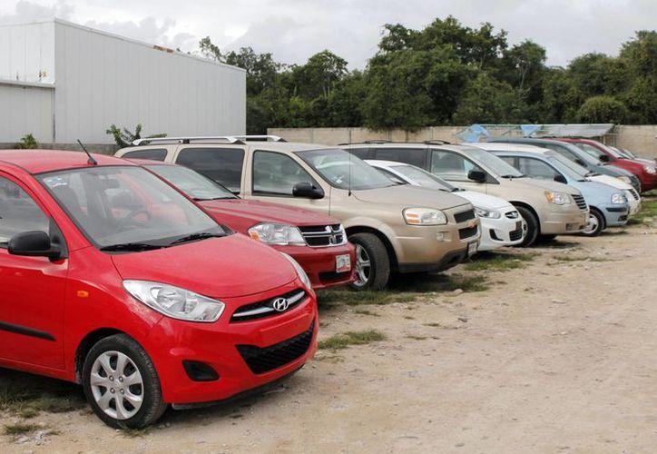 Sintra entregará los tarjetones a las arrendadoras de autos. (Luis Soto/SIPSE)