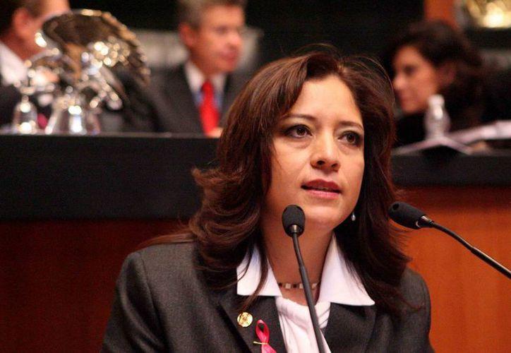 La senadora Lisbeth Hernández lecona, indicó que no sólo los senadores quieren saber qué pasa, sino también la ciudadanía. (Internet)