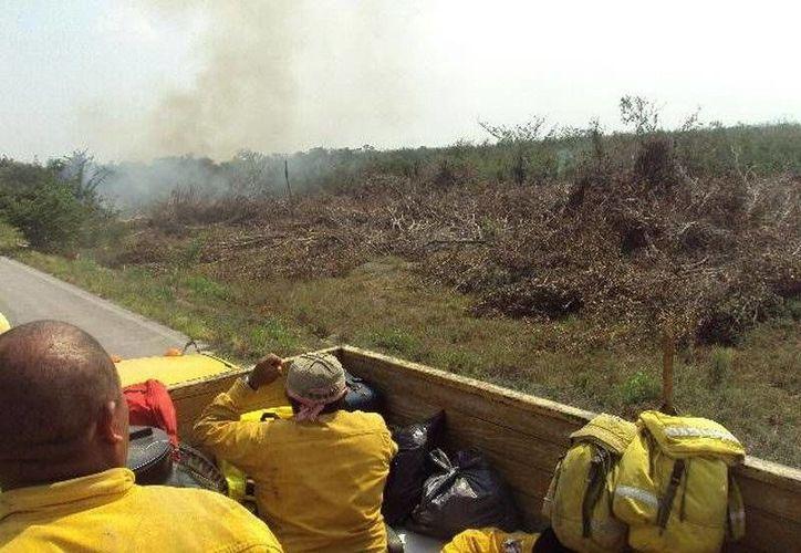 """Alrededor de 120 brigadistas participan en las tareas de combate del incendio """"Tunich-Ha"""" en Solidaridad. (Redacción/SIPSE)"""