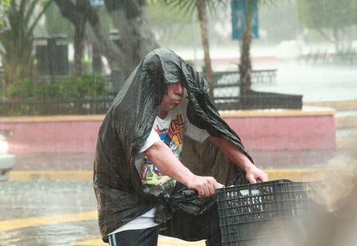 Ayer jueves se registraron lluvias vespertinas en la zona urbana de Mérida, que de nuevo encharcaron las calles del Centro Histórico. (Jorge Acosta/ Milenio Novedades)
