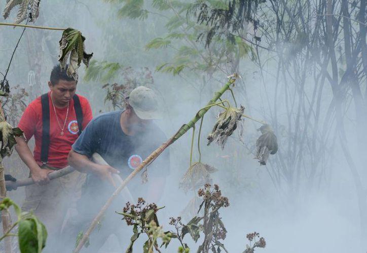 """El incendio """"La Amistad"""" tiene una afectación de 30 hectáreas. (Victoria González/SIPSE)"""