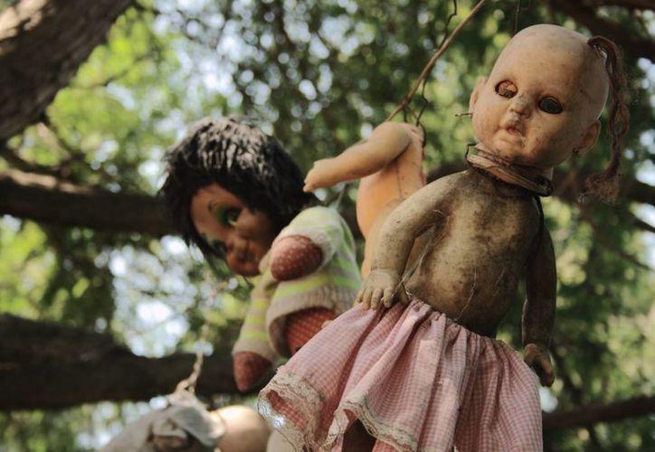 La isla de las muñecas embrujadas, en los canales de Xochimilco, guarda piezas con décadas de antigüedad. (dondeir.com)