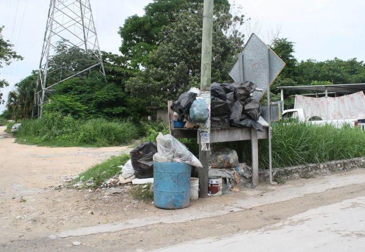 Pobladores piden recolección de basura en la comunidad. (Loana Segovia/SIPSE)