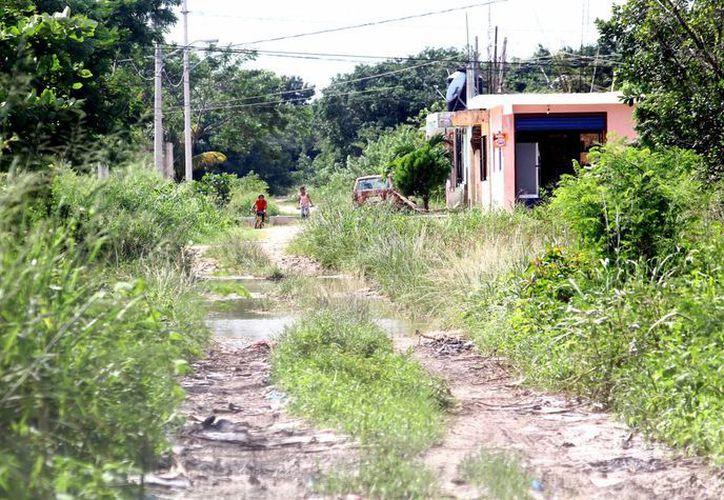 Después de las recientes lluvias quedaron encharcadas las calles de la colonia Flamboyanes y los habitantes temen por la presencia de moscos. (Gonzalo Zapata/SIPSE)