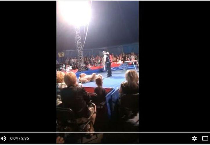 El incidente ocurrió durante una función de Circo sobre Hielo en la ciudad de Bila Tserkva, en el norte de Ucrania. (Excelsior)