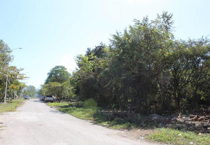 Los terrenos nacionales no pueden venderse entre los particulares. (Foto: Eddy Bonilla)
