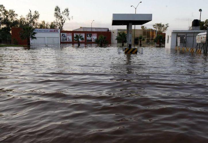 Guerrero es el estado con más municipios en emergencia: 24. (Notimex)