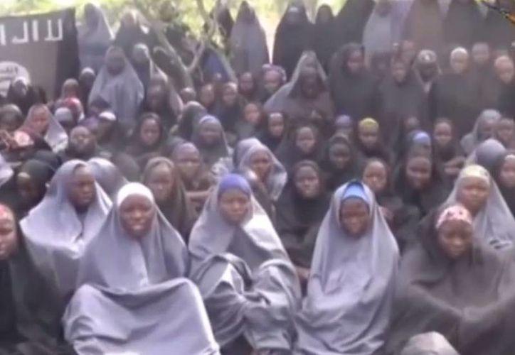 El centenar de niñas que aparecen bajo un árbol en el video corean oraciones musulmanas en árabe. (Captura de pantalla de YouTube)