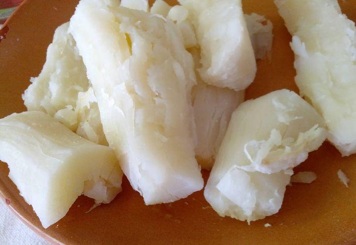 La yuca tiene que consumirse cocida, ya que cruda contiene unas toxinas leven que se eliminan con el calor. (gastrolamas)