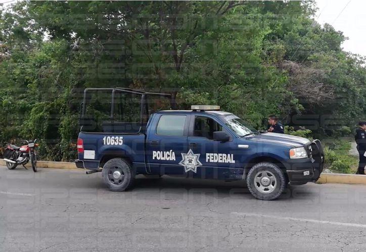 Elementos de la Policía Municipal arribaron al lugar.  (Orville Peralta/ SIPSE)