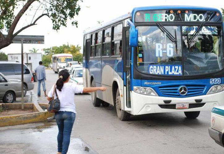 El regidor Noel Pinacho, comentó que para mejorar el servicio del transporte público se debe aplicar el reglamento. (Archivo/ SIPSE)