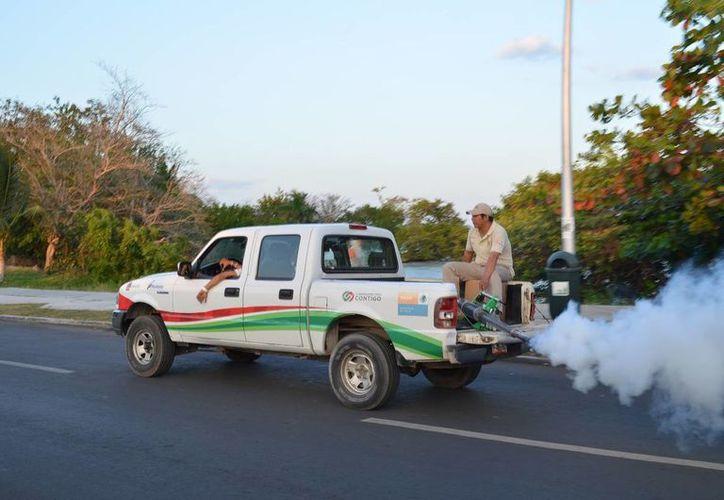 Han atendido 540 hectáreas con la nebulización. (Archivo/SIPSE)