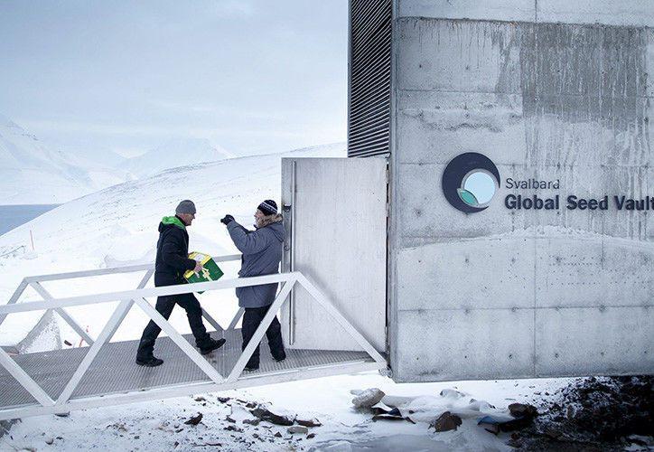 El incidente puso en duda la durabilidad y resistencia de la Bóveda de Semillas Global. (Foto: Contexto/Internet)