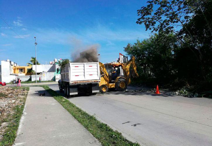 Personal de Servicios Públicos limpió el terreno en el fraccionamiento Galaxia II. (Adrián Barreto/SIPSE)