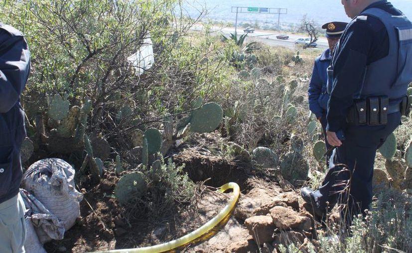Policías vigilan una toma clandestina de combustible que fue encontrada en el municipio de Epazoyucán, Hidalgo. (Emilio López/gendahidalguense.com)
