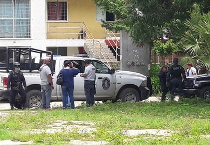 Al menos cinco cuerpos fueron encontrados en una fosa clandestina de Guerrero. (Javier Trujillo/Milenio).