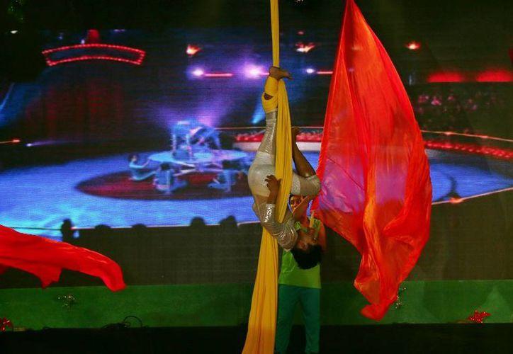 La Dirección de Cultura de Cozumel ofrece clases de cinematografía y danza aérea gratuitos. (Cortesía)