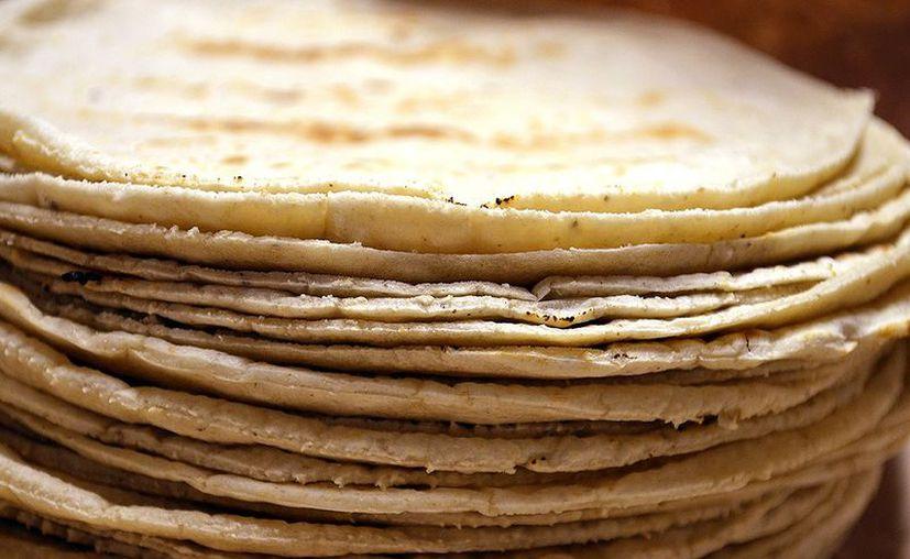 Científicos del IPN crearon una tortilla que combate la diabetes y la obesidad. (ancientartpodcast.or)