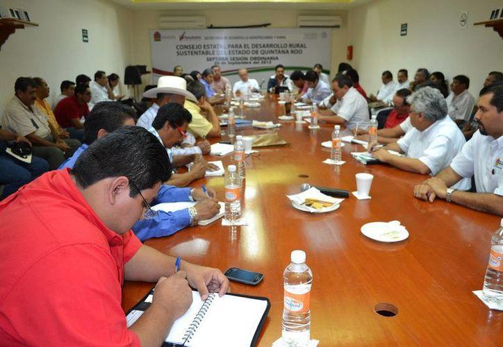 En la reunión fueron atendidas las problemáticas del sector cañero. (Edgardo Rodríguez/SIPSE)