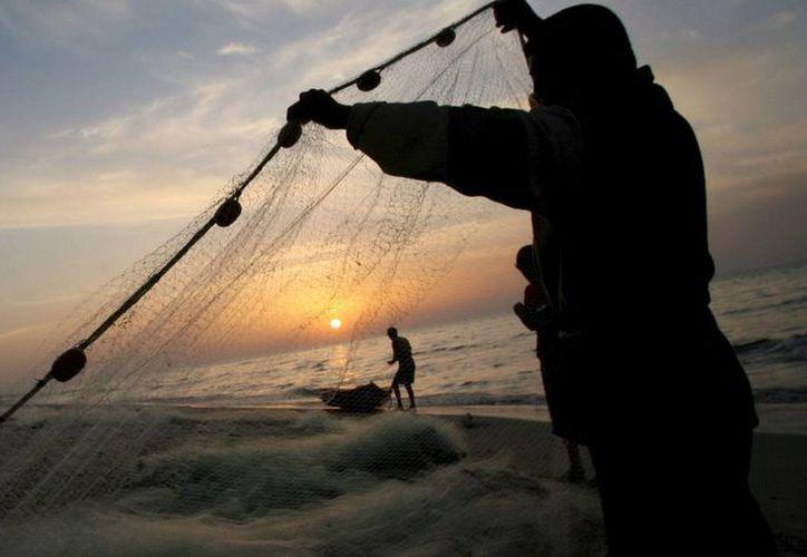 El incremento en capturas ilegales se debe, en gran medida, a la alta demanda de productos como langosta y camarón en el mercado informal, según autoridades cubanas. (EFE/Archivo)