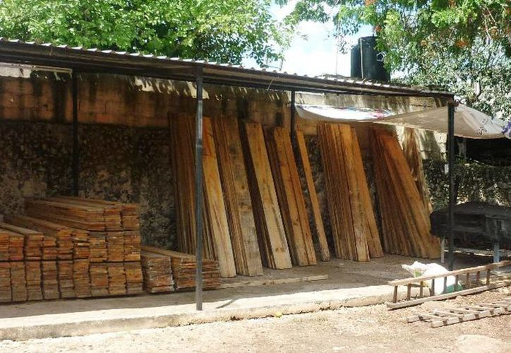 Los responsables del lugar no presentaron los documentos que amparaba la legal procedencia de la madera. (Milenio Novedades)