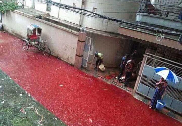 En Bangladesh, los ríos de sangre por un festival islámico es un hecho común y no sorprende a los habitantes. (Excélsior)