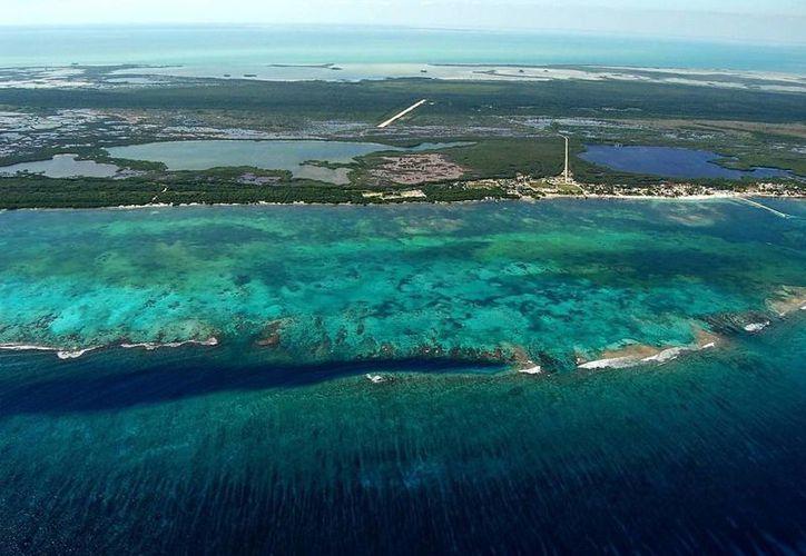 La barrera coralina de la Reserva de la Biosfera de Sian Ka'an se extiende a lo largo de los 120 kilómetros de costa. (Enrique Mena/SIPSE)