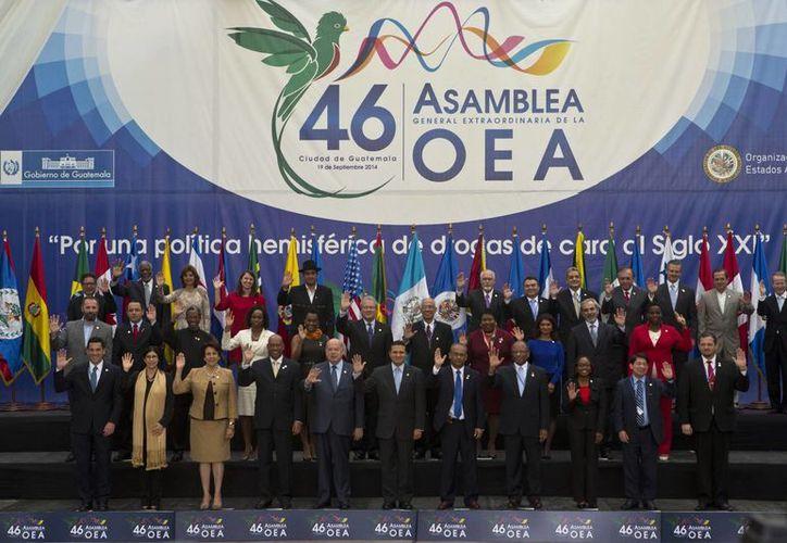 La asamblea de la OEA hizo un llamado a reducir la impunidad de los grupos del crimen organizado. (AP)