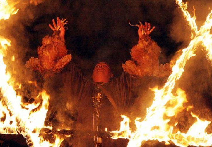 En el ritual de la misa negra, los 'elegidos olmecas' sacrifican gallinas y se queman estrellas de cinco picos.  (turismoedoveracruz.com)