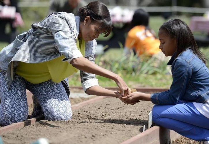La primera dama estadounidense, Michelle Obama (i) ayuda a Ariana Docanto (d), una estudiante de quinto curso en la escuela de Arthur D. Healey, a plantar semillas. (EFE)