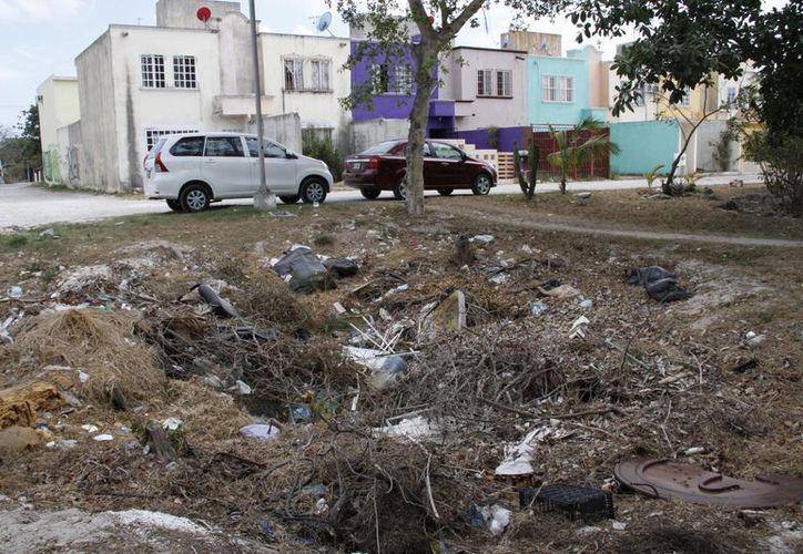 En algunos parques se crean basureros clandestinos que son focos de infección. (Tomás Álvarez/SIPSE)