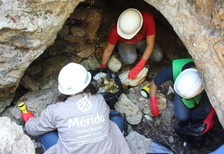 Ayuntamiento, vecinos, y boy scouts limpiaron el cenote Gota Dorada, en Mérida. La mayoría de los cuerpos de agua subterránea que están en la ciudad no tienen uso. (Cortesía)