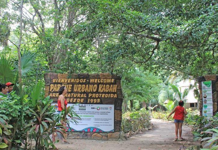 """Veintidós años han transcurrido desde la publicación en el Periódico Oficial del Estado del anuncio de decreto como """"Área Natural Protegida"""" del Parque Kabah. (Archivo/SIPSE)."""