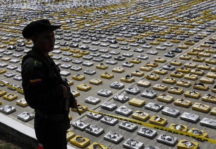 El narcótico fue ubicado en una zona selvática del departamento de Chocó, al nortoeste colombiano. (AP)